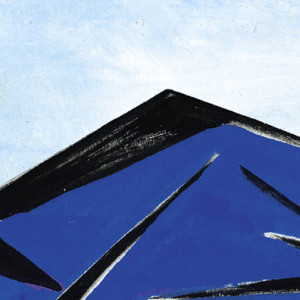 Extrait affiche Vincent n'a pas d'écailles : la crête noire