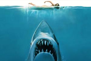 jaws les dents de la mer stieven spielberg illustration