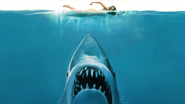 jaws les dents de la mer stieven spielberg illustration