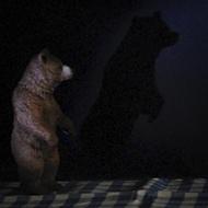 Interview azimutée de jean-Jacques Annaud : ombres © Annick Holtz