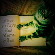 Interview azimutée avec Anne Le Ny : Alice au pays des Merveilles © Annick Holtz