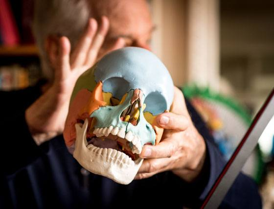 Dans le bureau d'Alejandro Jodorowsky. Crâne casse-tête en 22 parties © Yann Vidal