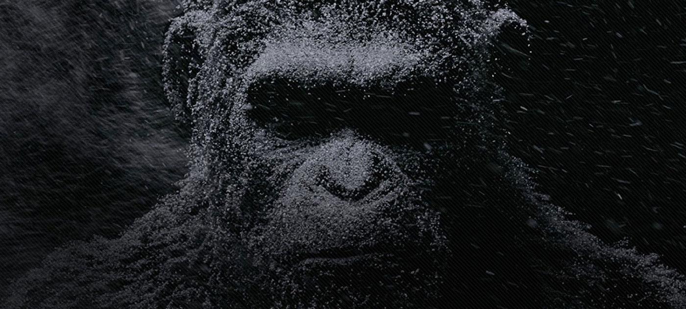 BAPWEB-BAP46-Couverture-Header-Planete-singes