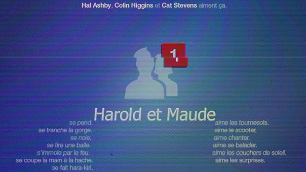 Harold et Maude - homepage