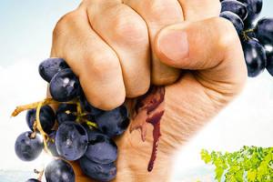 Dossier Cinévino : image du film Résistance Naturelle
