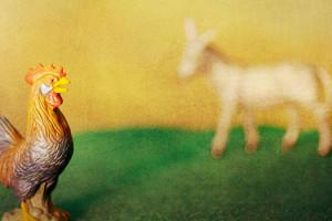 Du coq à l'âne - BANDE A PART magazine de cinéma