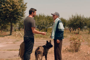 Dogs de Bogdan Mirica
